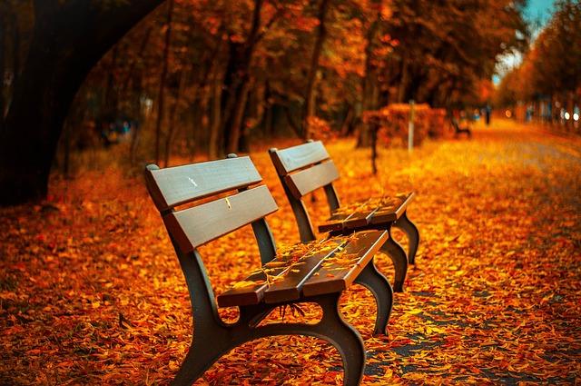 秋冬ツアー